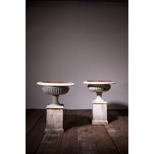 A Pair of Cast Iron Tazza Urns on Plinths