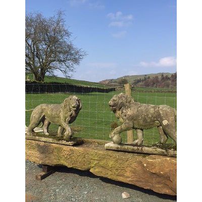 antique stone lions garden statuary