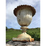 Antique cast iron garden urn: English C.1880