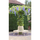 circular wrought iron tree seat with wisteria treillage canopy