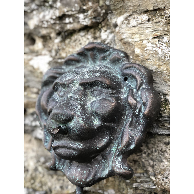 Bronze Lion Mask