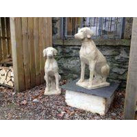 Pair of stone Labradors