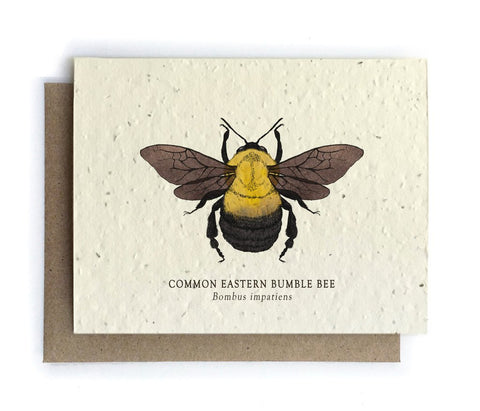 The Bower Studio - Bumble Bee Greeting Cards - Plantable Seed Paper