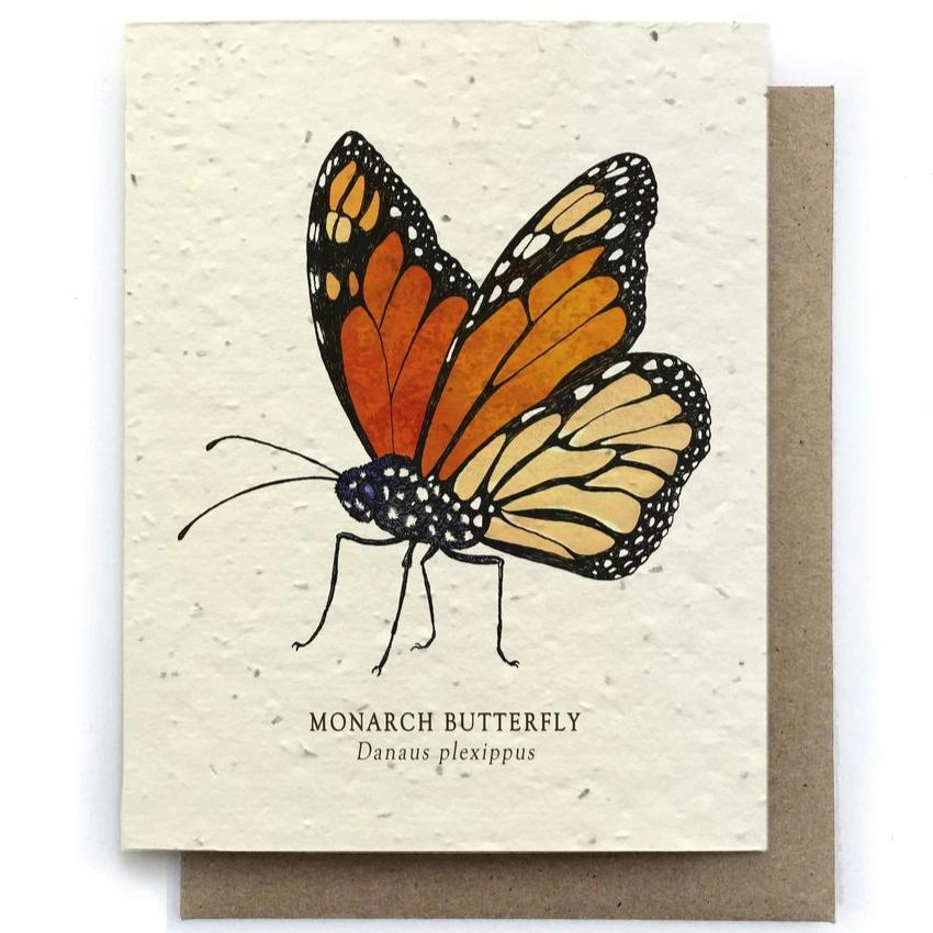 Monarch Butterfly Greeting Cards - Plantable Seed Paper