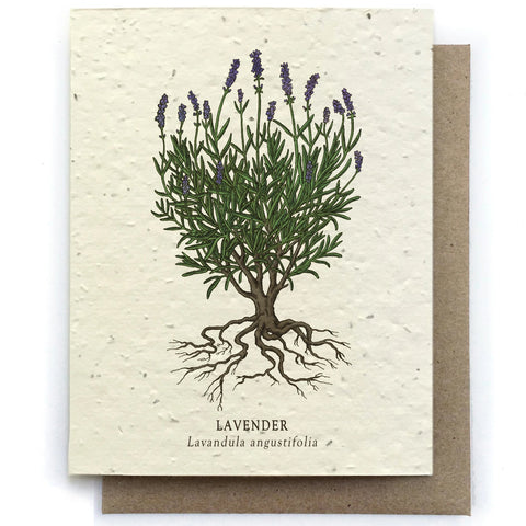 Lavender Botanical Greeting Cards - Plantable Seed Paper
