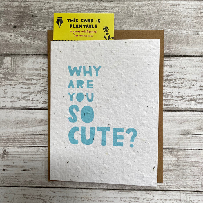 Why So Cute Card