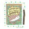 Turtle's Soup - Looking Sharp Hedgehog Birthday Card