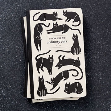 There Are No Ordinary Cats (Notebook)