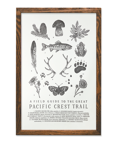 pacific crest trail guide