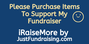 iRaiseMore by JustFundraising.com