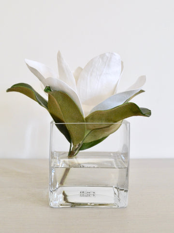 Magnolia in Glass Cube