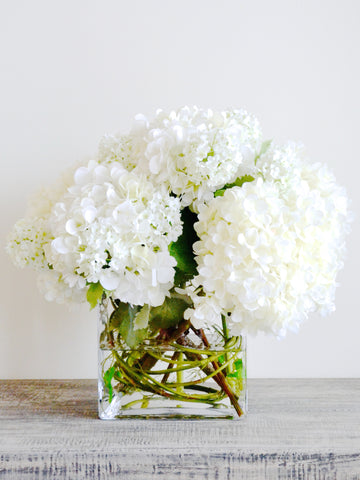 Hydrangea in Glass Cube
