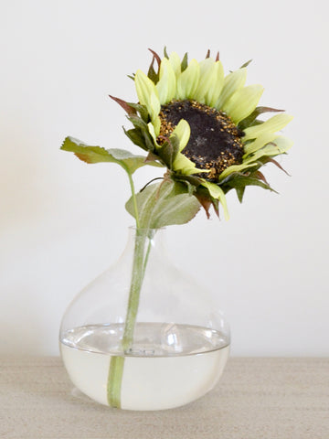 Green Sunflower in Glass Bubble