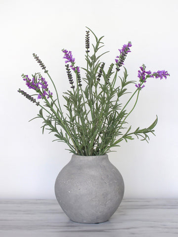 Lavender Bush in Olive Jar