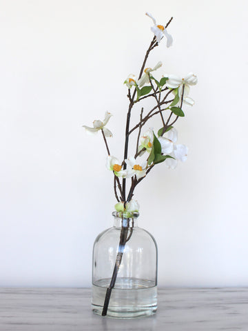 Dogwood Glass Jar - Short