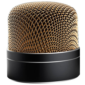 Silver Mic Wireless Speaker
