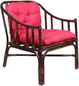 IRA Rattan Contemporary Styled Arm Chair with Cushion - IRA Furniture
