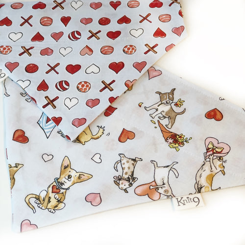 Puppy Love Bandana - Pale Blue