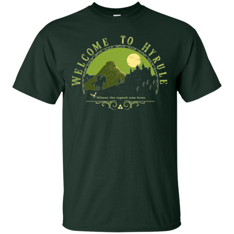 Welcome to Hyrule T-Shirt