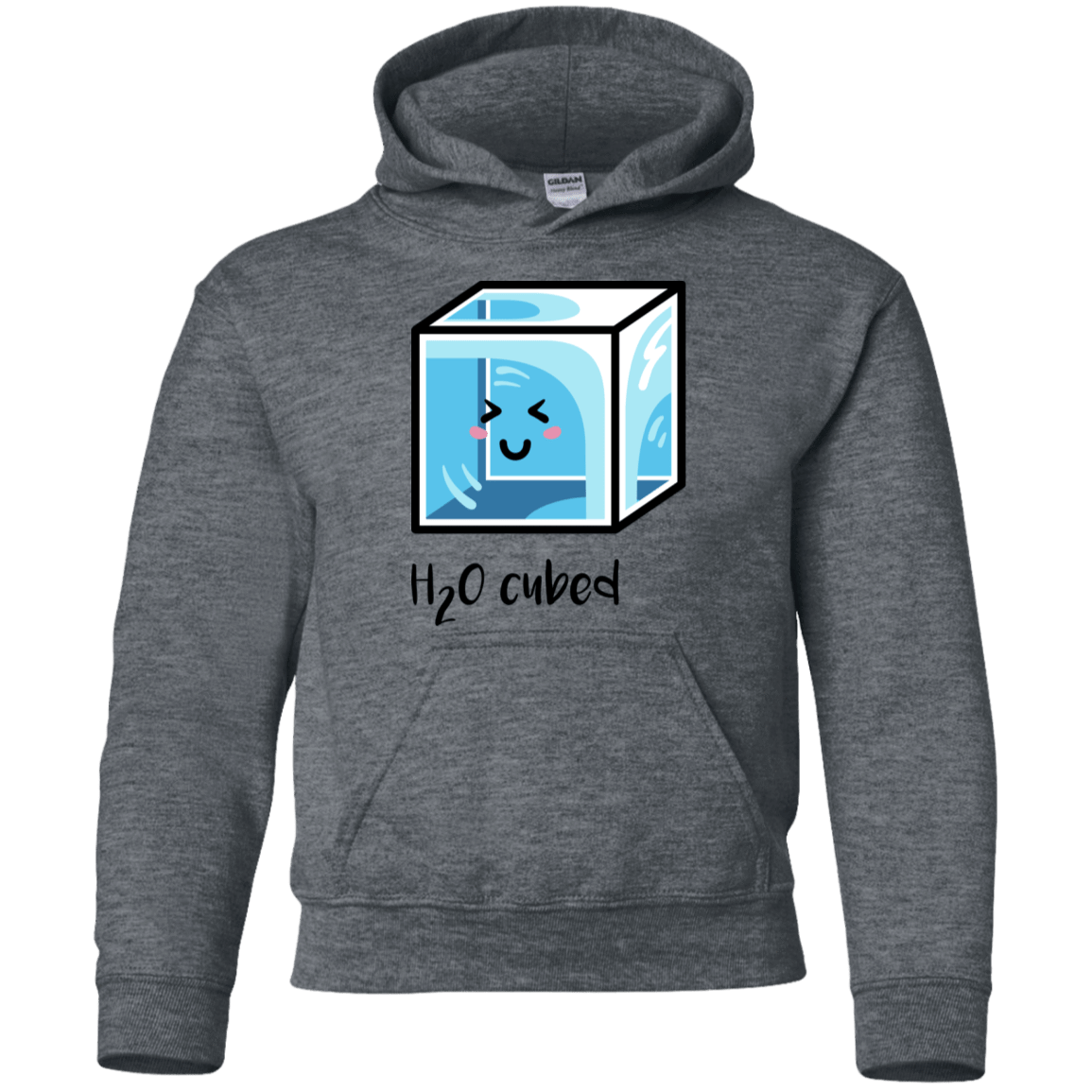 Sweatshirts Dark Heather / YS H2O Cubed Youth Hoodie