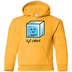 Sweatshirts Gold / YS H2O Cubed Youth Hoodie