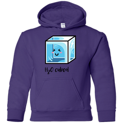Sweatshirts Purple / YS H2O Cubed Youth Hoodie