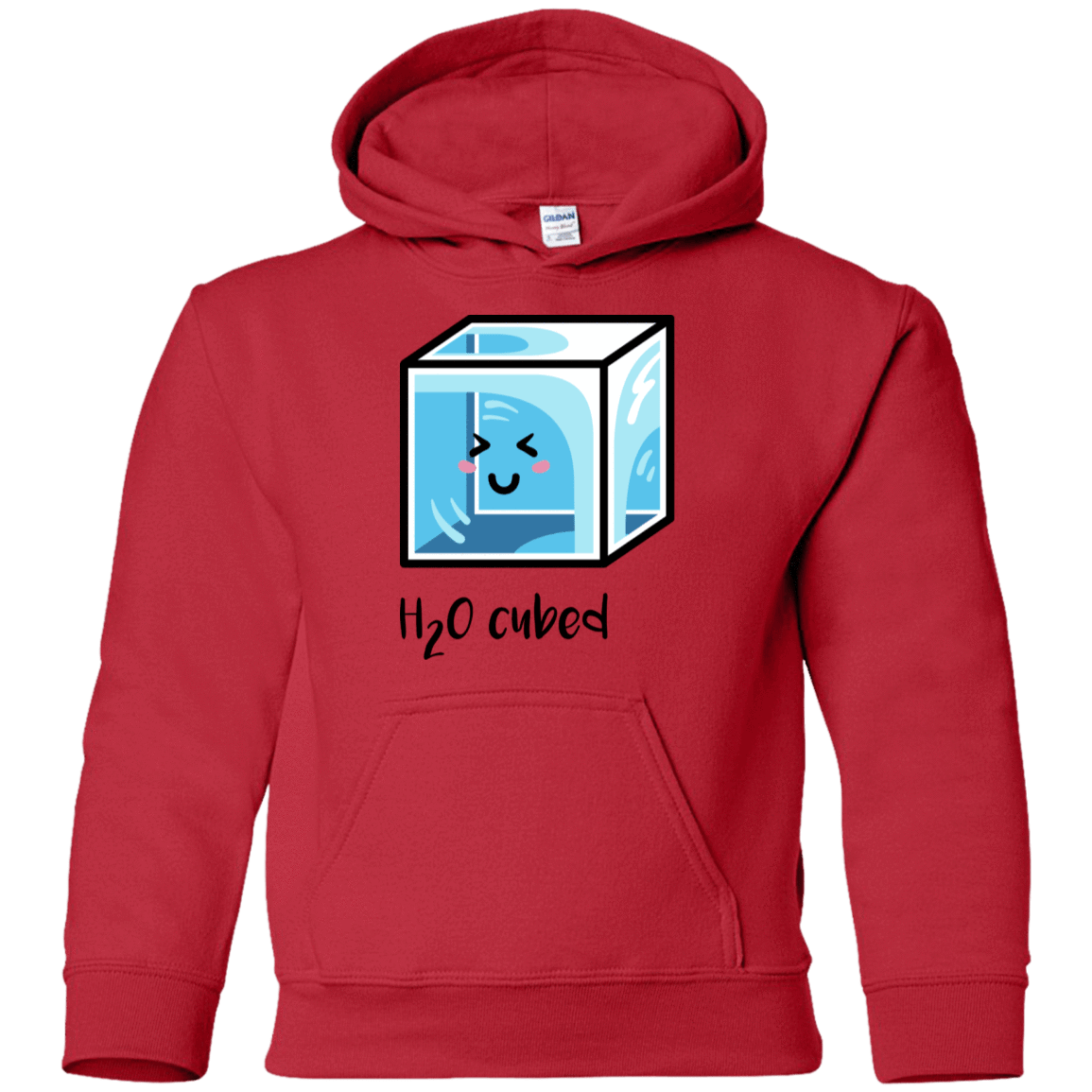 Sweatshirts Red / YS H2O Cubed Youth Hoodie