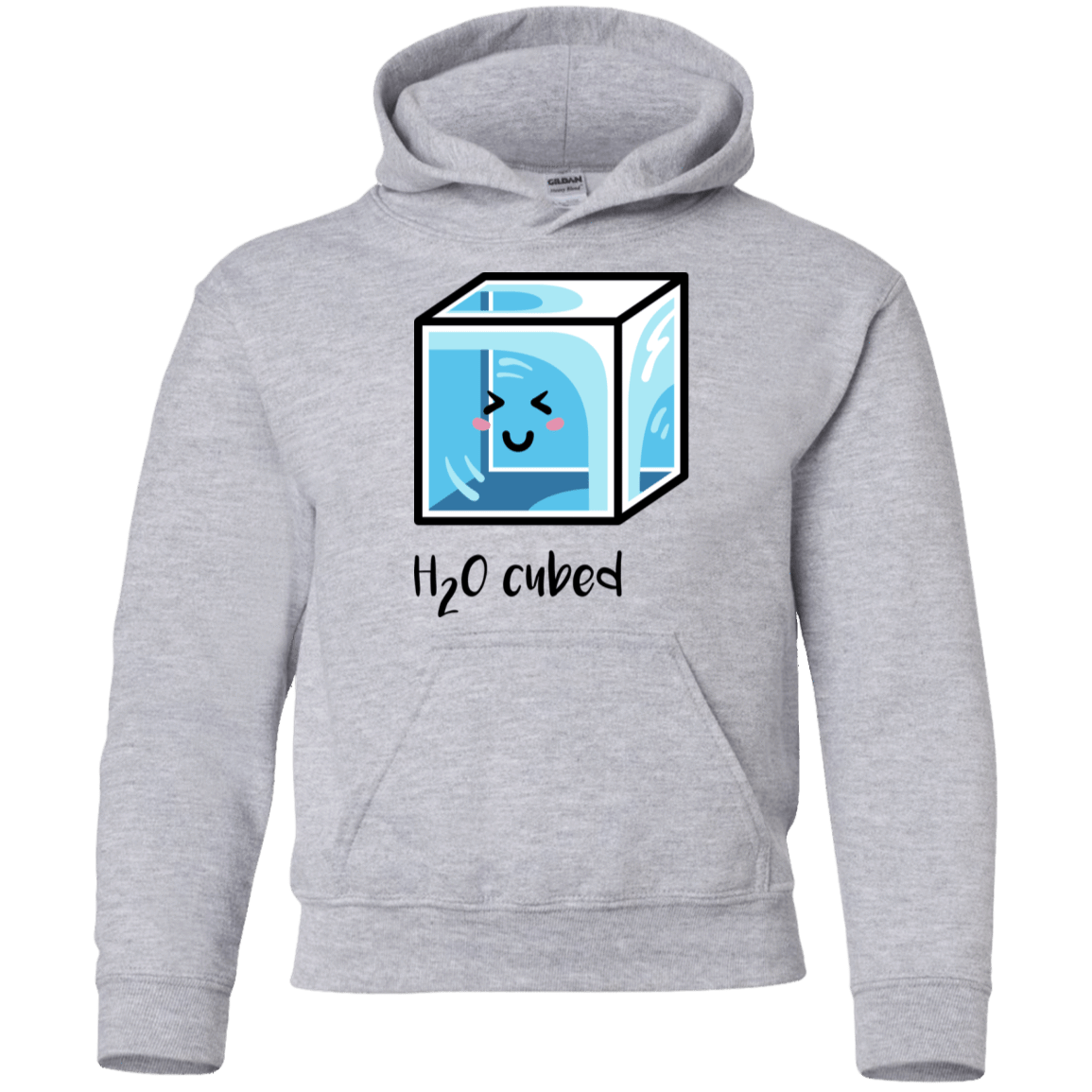 Sweatshirts Sport Grey / YS H2O Cubed Youth Hoodie