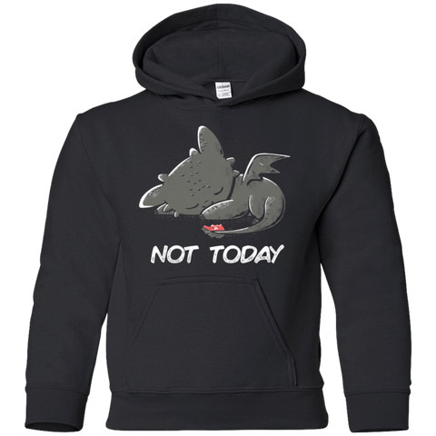 Toothless Not Today Youth Hoodie