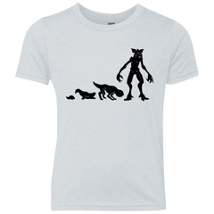 T-Shirts Heather White / YXS Demogorgon Evolution Youth Triblend T-Shirt