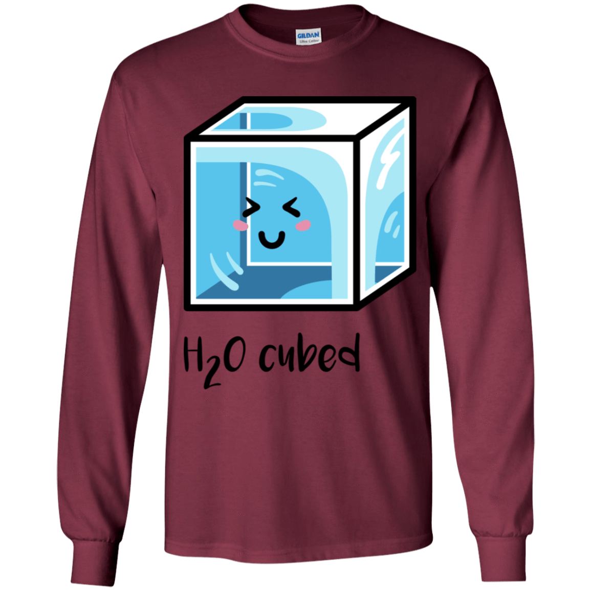 T-Shirts Maroon / YS H2O Cubed Youth Long Sleeve T-Shirt