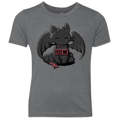 Toothless Feed Me Youth Triblend T-Shirt