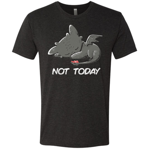 Toothless Not Today Men's Triblend T-Shirt