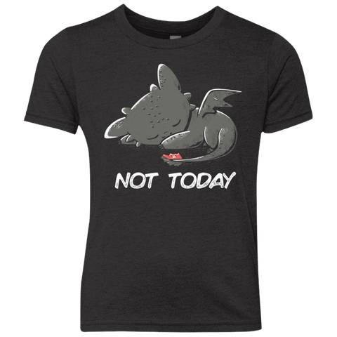 Toothless Not Today Youth Triblend T-Shirt