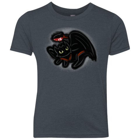 Toothless Simba Youth Triblend T-Shirt