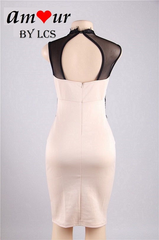 Sleeveless Black & Beige Lace Clubbing Party Pencil Dress
