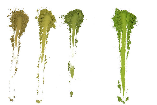 How Can You Tell Good Matcha From Bad Matcha -- Color is Key