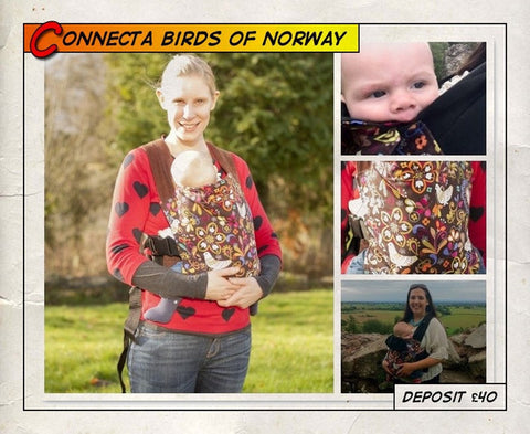 Toddler Connecta Birds of Norway