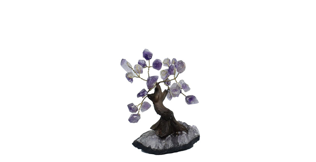 Tree-Bonsai Tree-Amethyst