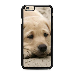 coque iphone 6 labrador