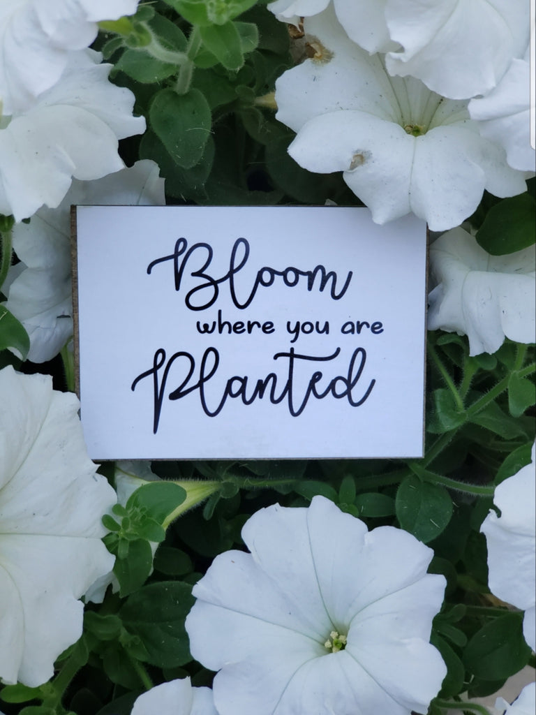 """Bloom Where You Are Planted"" Wood Sign"