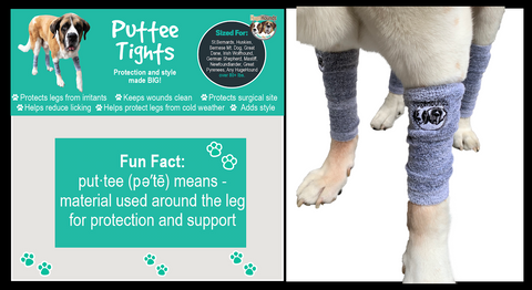 Puttee Tight leg warmer