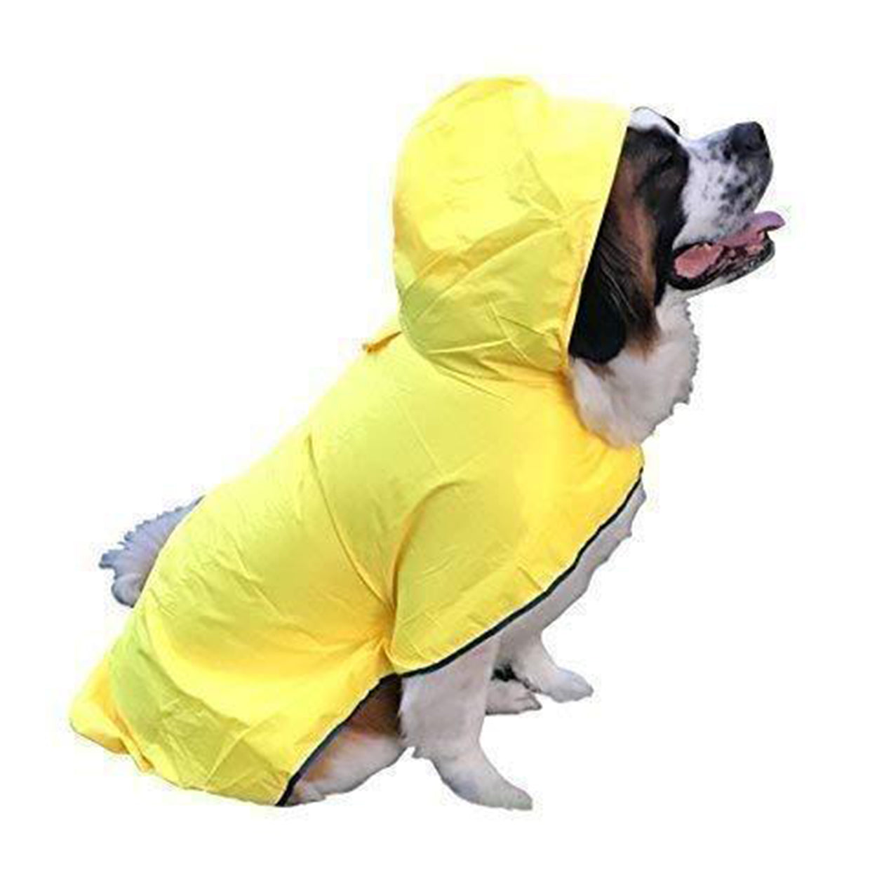 The RainRover Extra LARGE Dog Raincoat Made For The Plus-size Dog