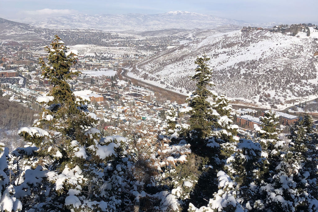 View of Park City from the mountain
