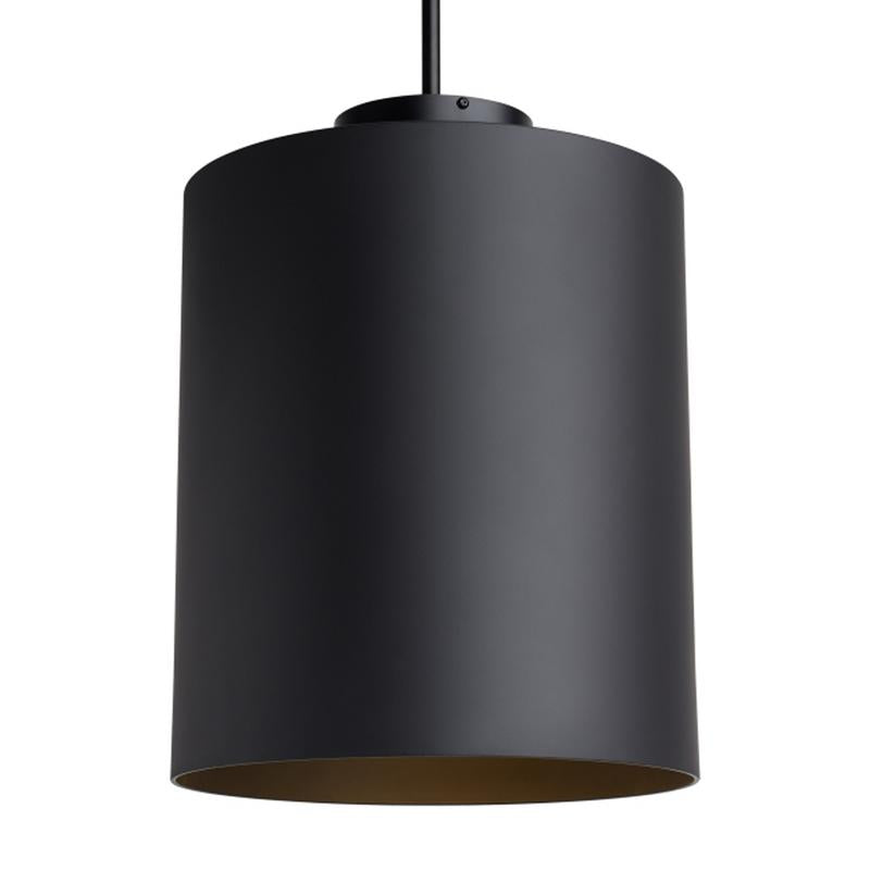 Matte Black finish, Hutch Pendant from Tech Lighting