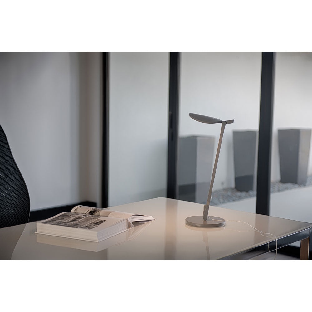 matte grey splitty desk lamp on desk lighting a book