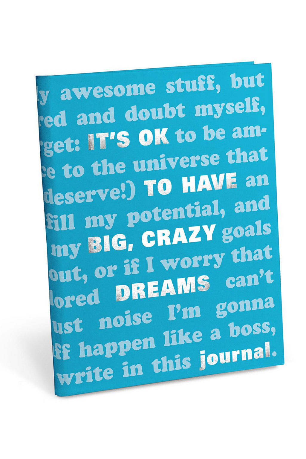 Knock Knock It's OK To Have Big Dreams Journal