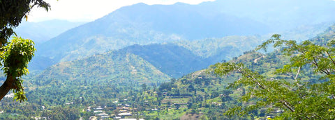 A town with the Rwenzori Mountains in the background
