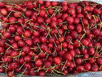 US Red Cherries