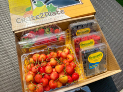 Gift Box US Rainier Cherries and 4 Berry Medley